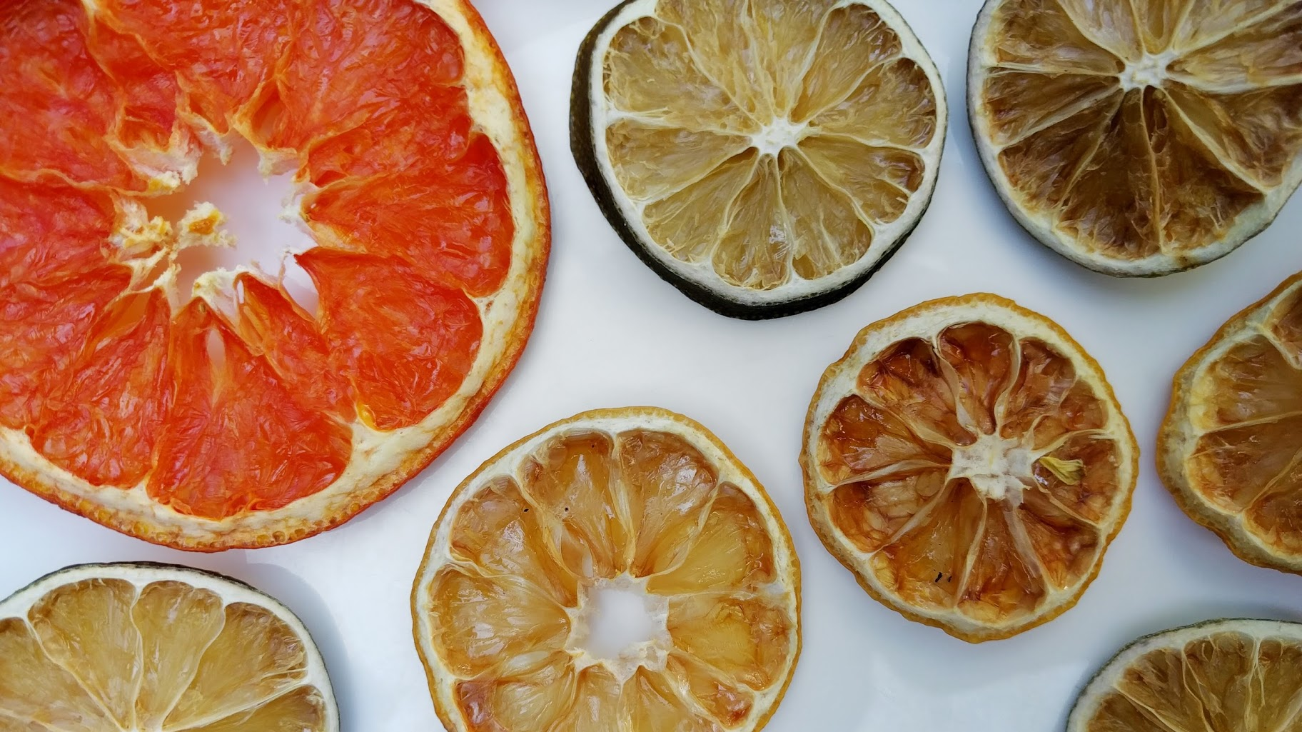 Photo of Dehydrated Citrus