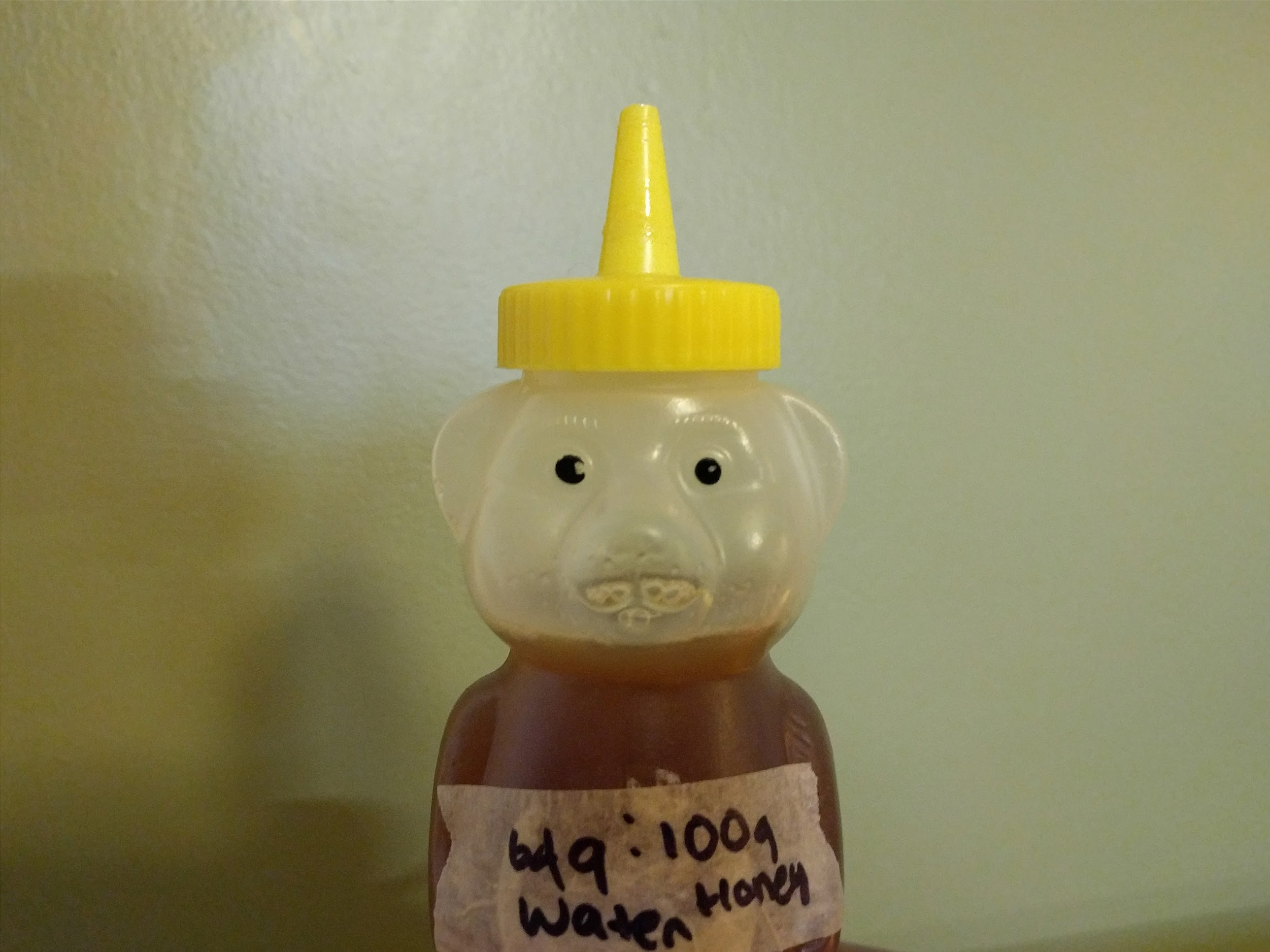 Photo of Honey Syrup